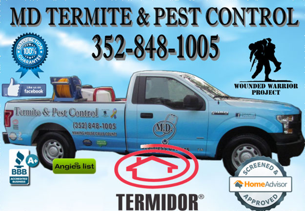 MD Termite & Pest Control in New Port Richey Florida