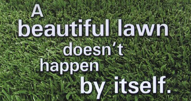 Lawn Fertilization in and near Spring Hill Florida