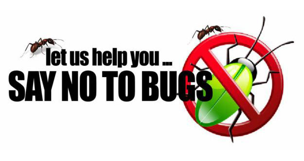 Home Pest Control in and near Tampa Florida