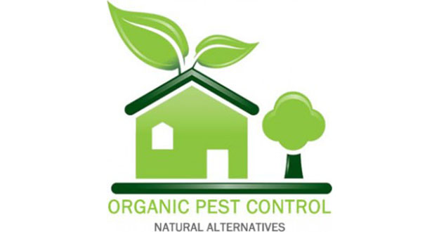 Organic Pest Control in and near Tampa Florida