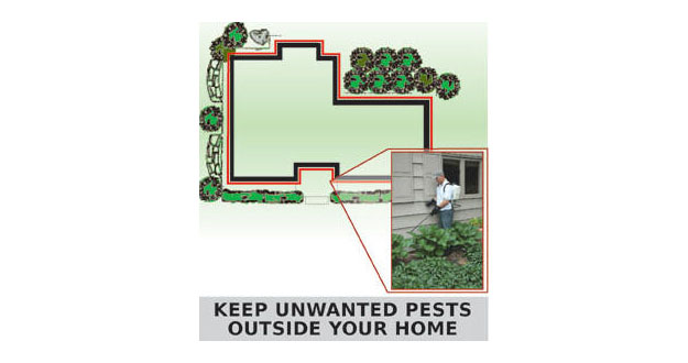 Perimeter Pest Control Sprays in and near Tampa Florida